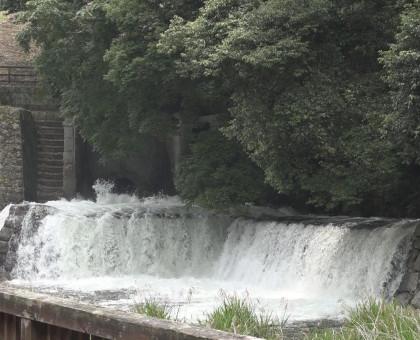 香川県 満濃池で「ゆる抜き」