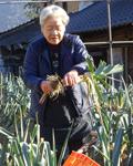 江本喜久美さん80歳3