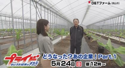 5月24日放送 「どうなった?あの企業!Part.1」