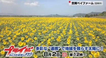 """8月2日(日)放送 「多彩な""""連携""""で地域を照らす太陽に!」"""