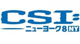 CSI:ニューヨーク8