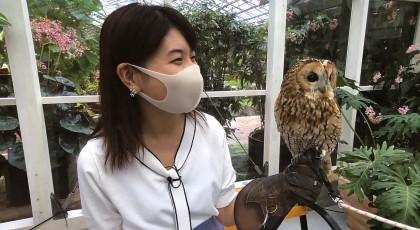 松江フォーゲルパークで癒やされませんか?♡
