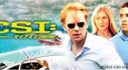 CSIマイアミ8