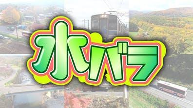 水バラ ローカル路線バス乗り継ぎ対決旅 鬼ごっこ③ 県境バトル!成田山~筑波山